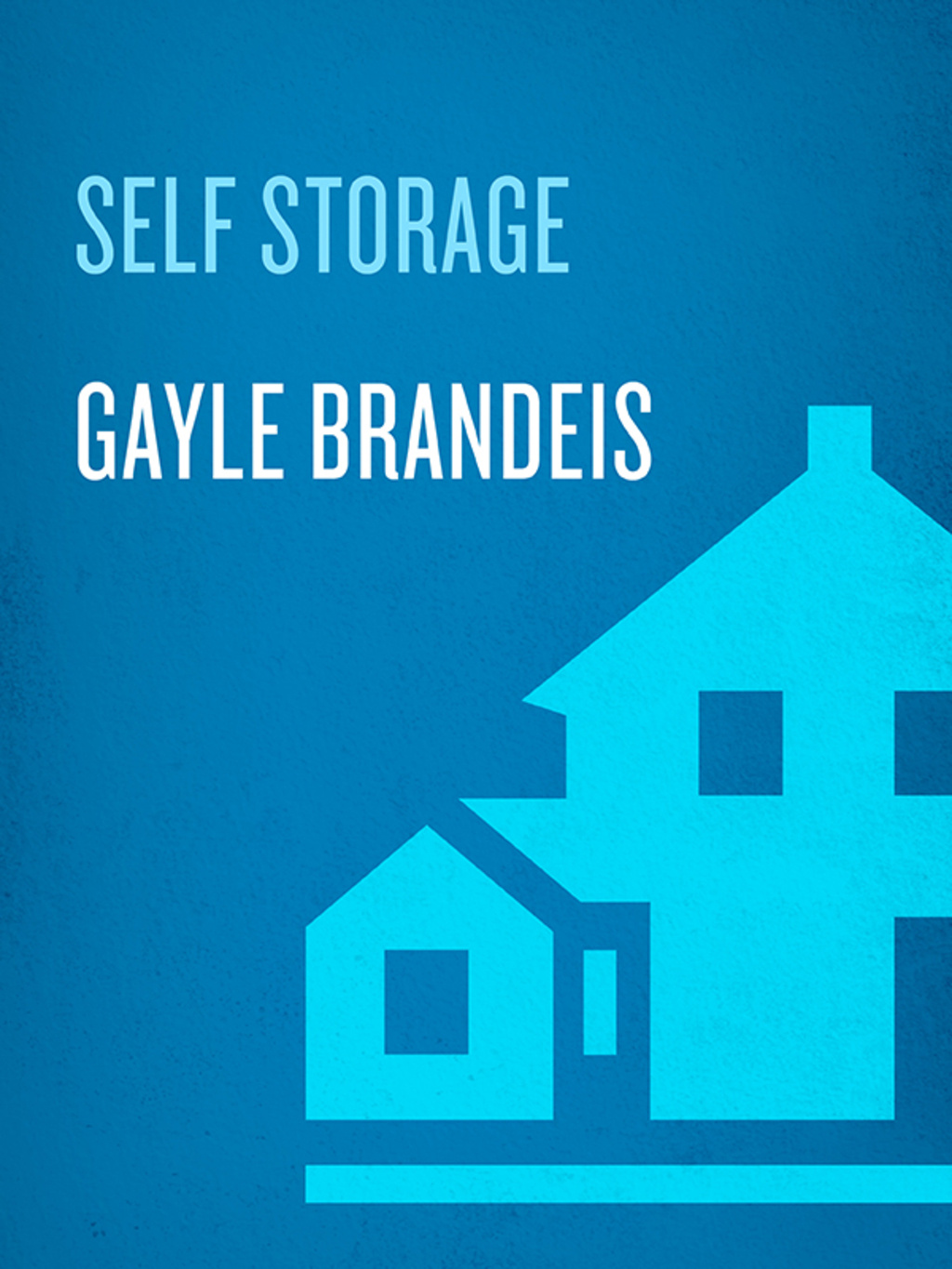 Self Storage (ebook) eBooks