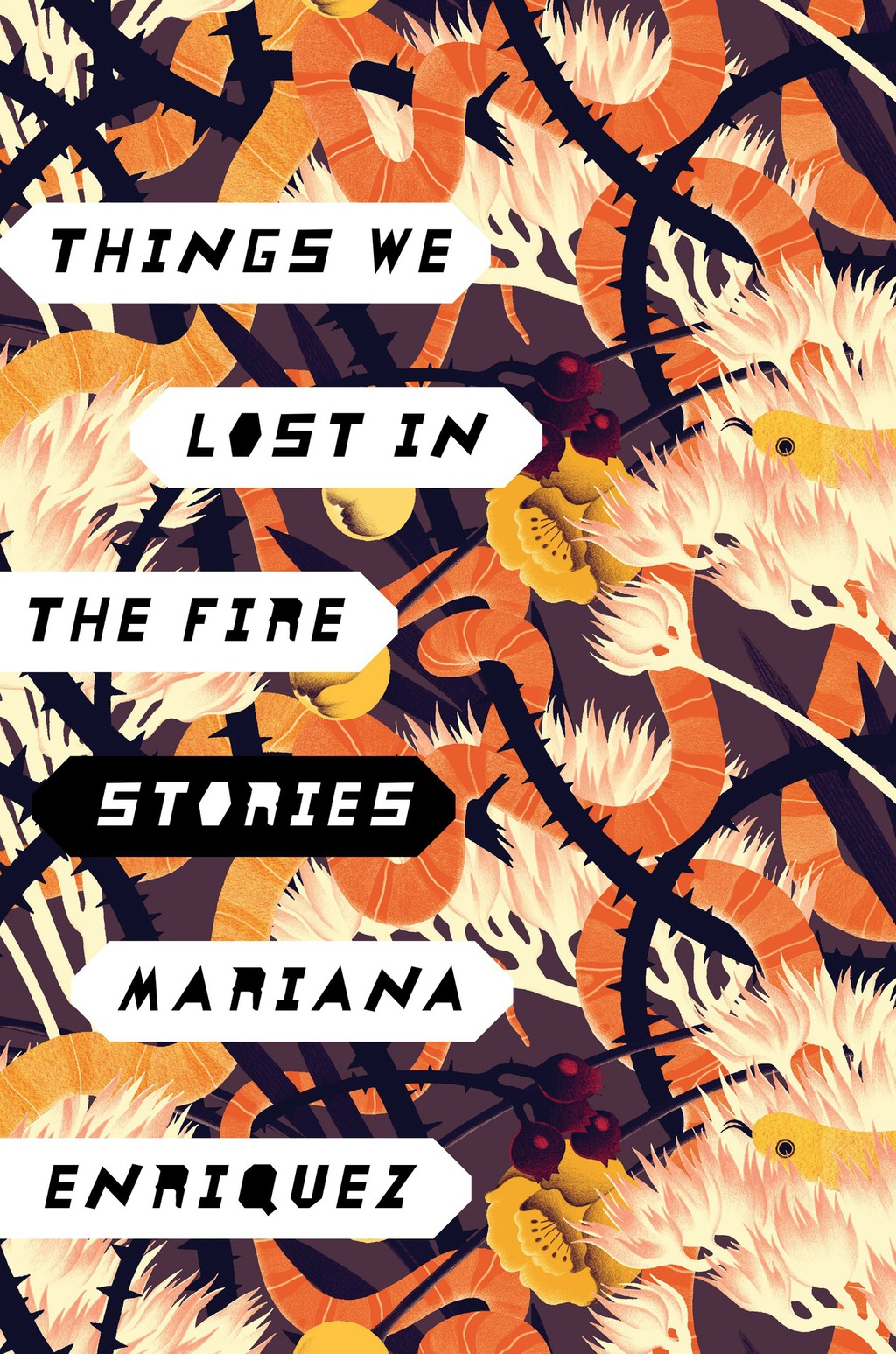 Things We Lost in the Fire (ebook) eBooks