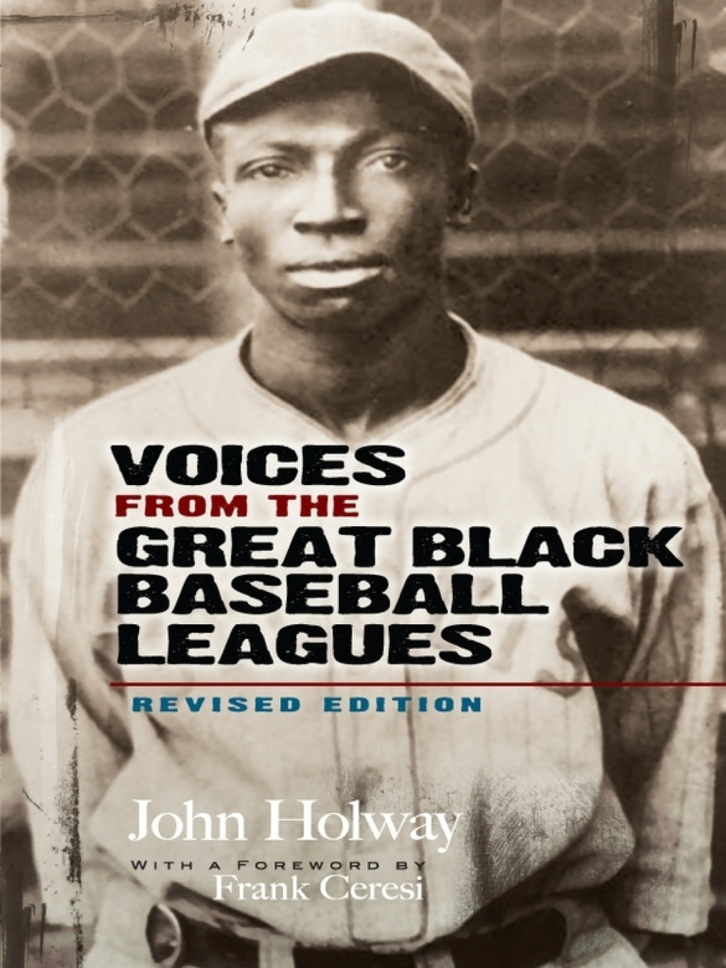 Voices from the Great Black Baseball Leagues (ebook) eBooks