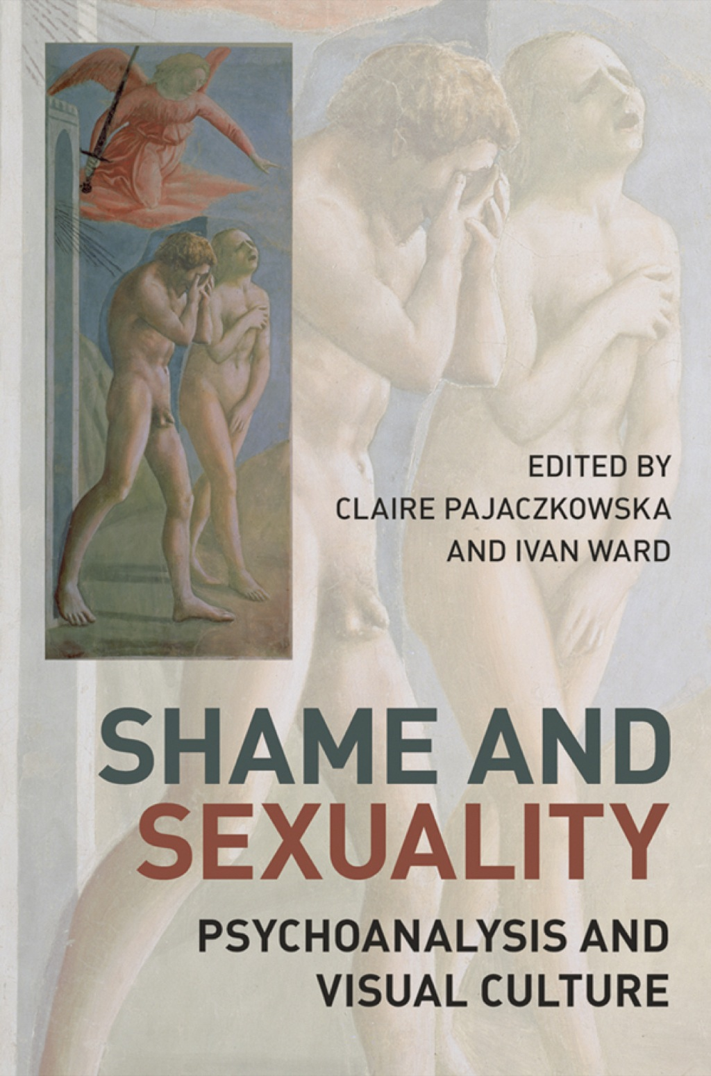 Shame and Sexuality (ebook) eBooks