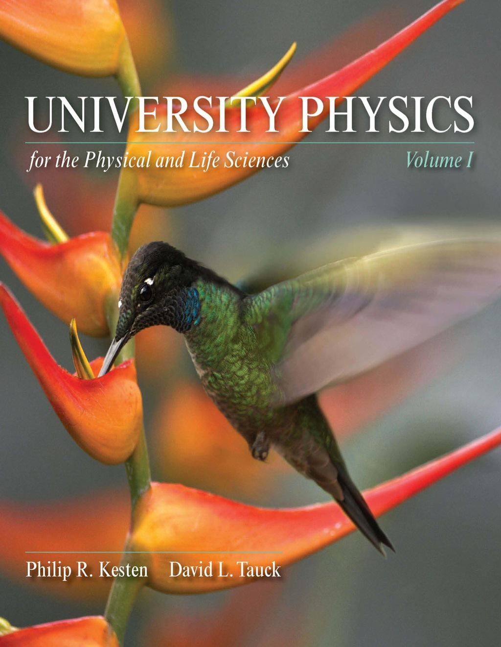 University Physics for the Physical and Life Sciences (ebook)