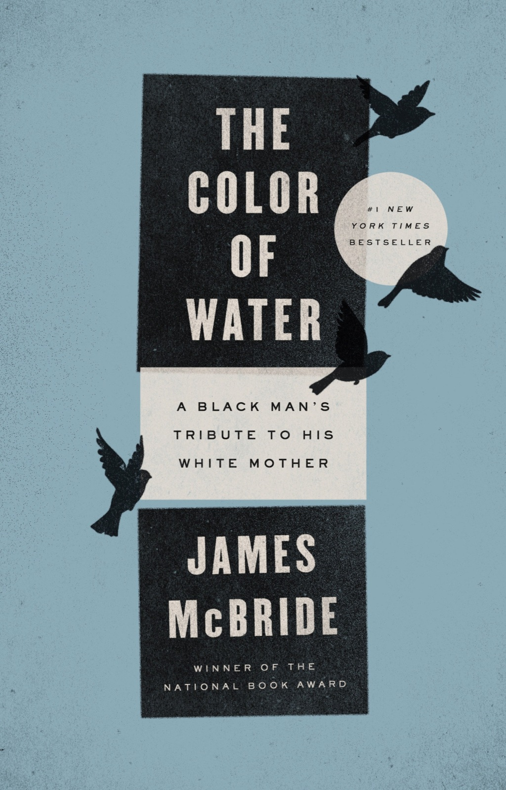 The Color of Water (ebook)