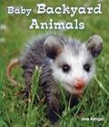 Lots of baby animals live in your backyard