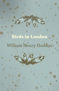 This early work by William Henry Hudson was originally published in 1898 and we are now republishing it with a brand new introductory essay