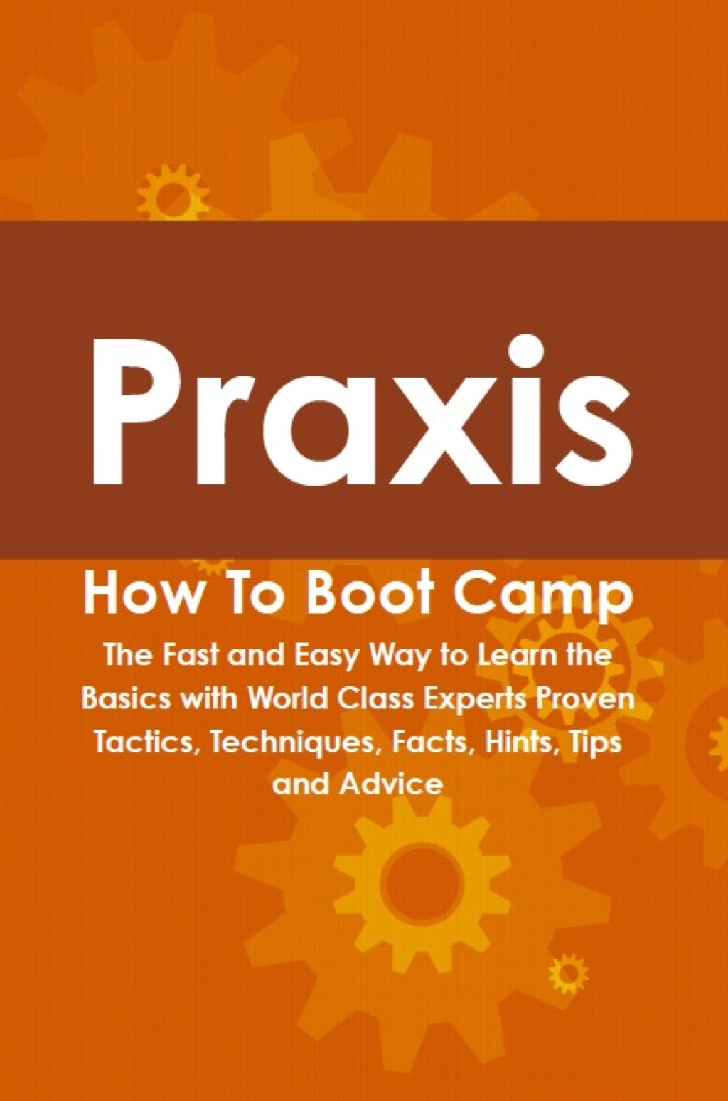 Praxis How To Boot Camp: The Fast and Easy Way to Learn the Basics with World Class Experts Proven Tactics, Techniques, Facts, Hints, Tips and Advice (ebook) eBooks