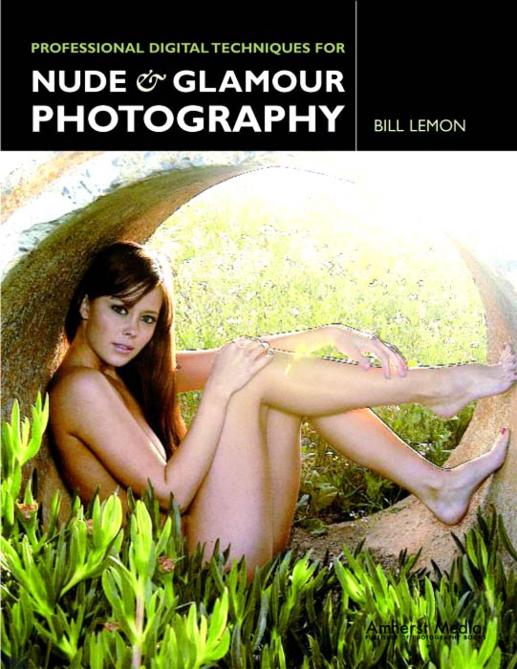 Professional Digital Techniques for Nude & Glamour Photography (ebook) eBooks