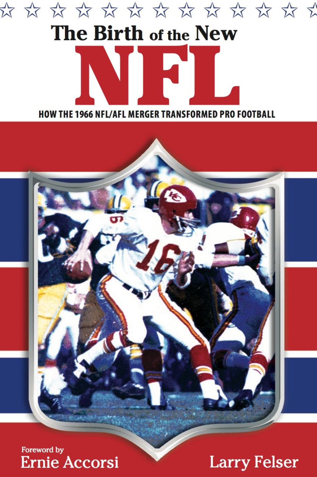 Birth of the New NFL: How the 1966 NFL/AFL Merger Transformed Pro Football (ebook) eBooks