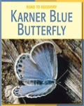 With fascinating information and facts, alongside beautiful pictures, students will learn about the Karner Blue Butterfly, its status on the endangered species list, why it has become endangered, and how it is planning on staging a comeback on the road to recovery.