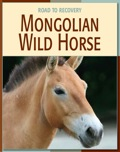 The Mongolian wild horse was once considered extinct in the wild and only a few existed in zoos