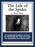 The Life of the Spider 9781633840423
