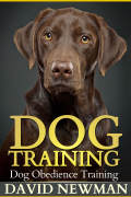 Dog Training: Dog Obedience Training