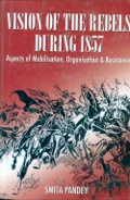 The centrality of this book is the 'vision of the revolutionaries' as manifested in their writings in archival records, their syncretic vision, miraculous modes of communications, the working of their government, and the nature and immensity of this Great War, with its pan Indian extent