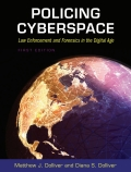Policing Cyberspace