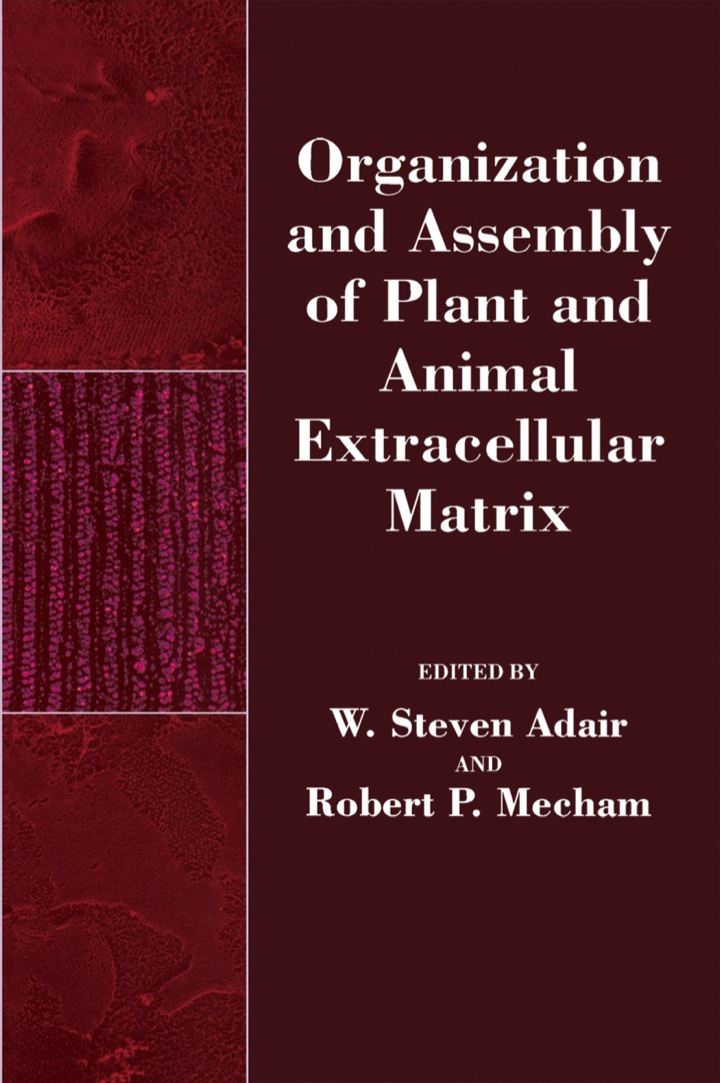 Organization and Assembly of Plant and Animal Extracellular Matrix
