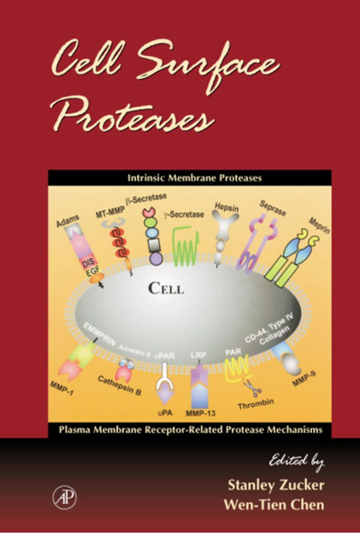 Cell Surface Proteases