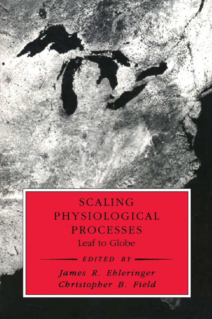 Scaling Physiological Processes: Leaf to Globe