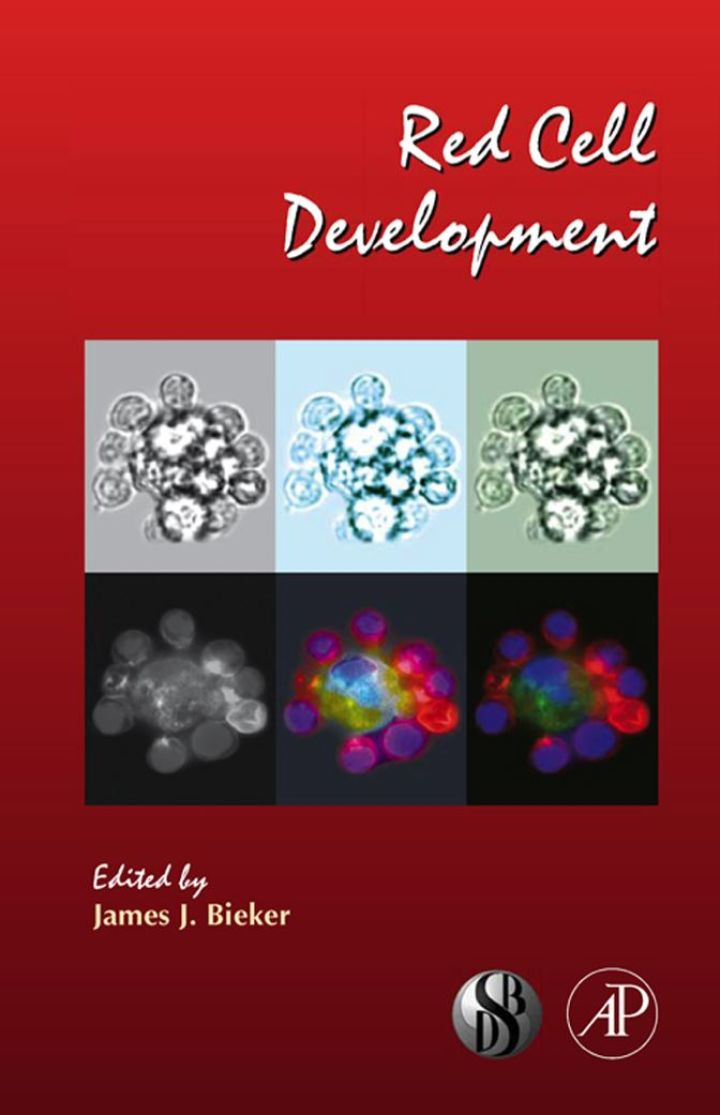 Red Cell Development: Current Topics in Developmental Biology