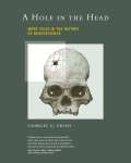 A Hole in the Head 9780262291590