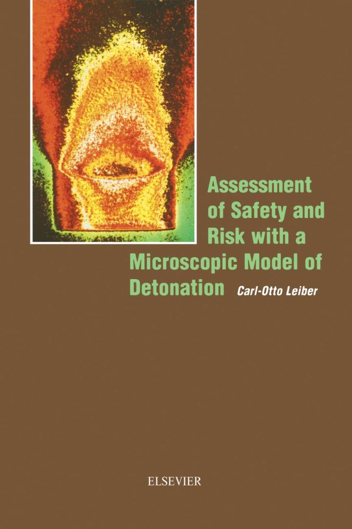 Assessment of Safety and Risk with a Microscopic Model of Detonation