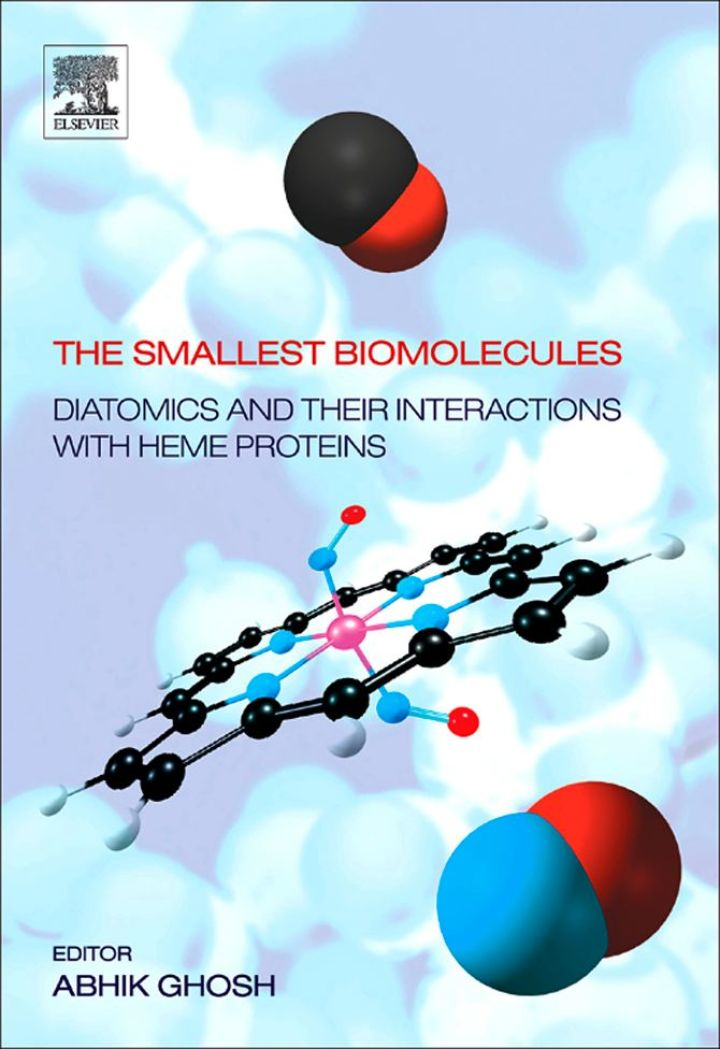 The Smallest Biomolecules: Diatomics and their  Interactions with Heme Proteins: Diatomics and their  Interactions with Heme Proteins