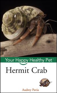 Hermit Crab              by             Audrey Pavia