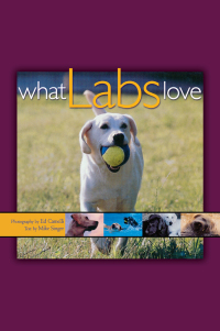 What Labs Love              by             Ed Camelli