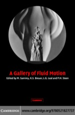 """A Gallery of Fluid Motion"" (9780511162442)"
