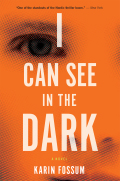 I Can See in the Dark 9780544114364