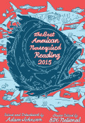 The Best American Nonrequired Reading 2015 9780544579293