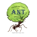 The Life and Times of the Ant 9780547349640