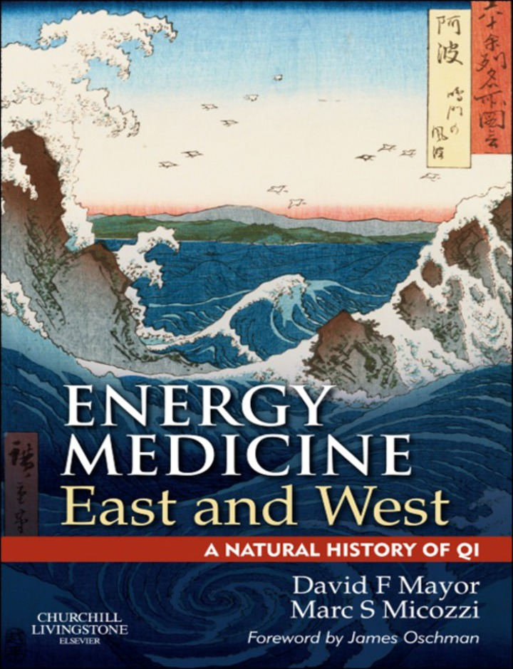 E-Book Energy Medicine East and West