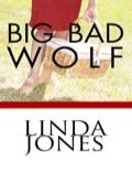 Big Bad Wolf 9780759273818
