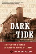 Dark Tide 9780807096673