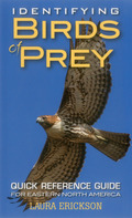Identifying Birds of Prey 9780811763950