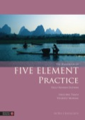 The Handbook of Five Element Practice 9780857011459