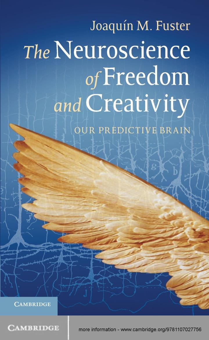 The Neuroscience of Freedom and Creativity