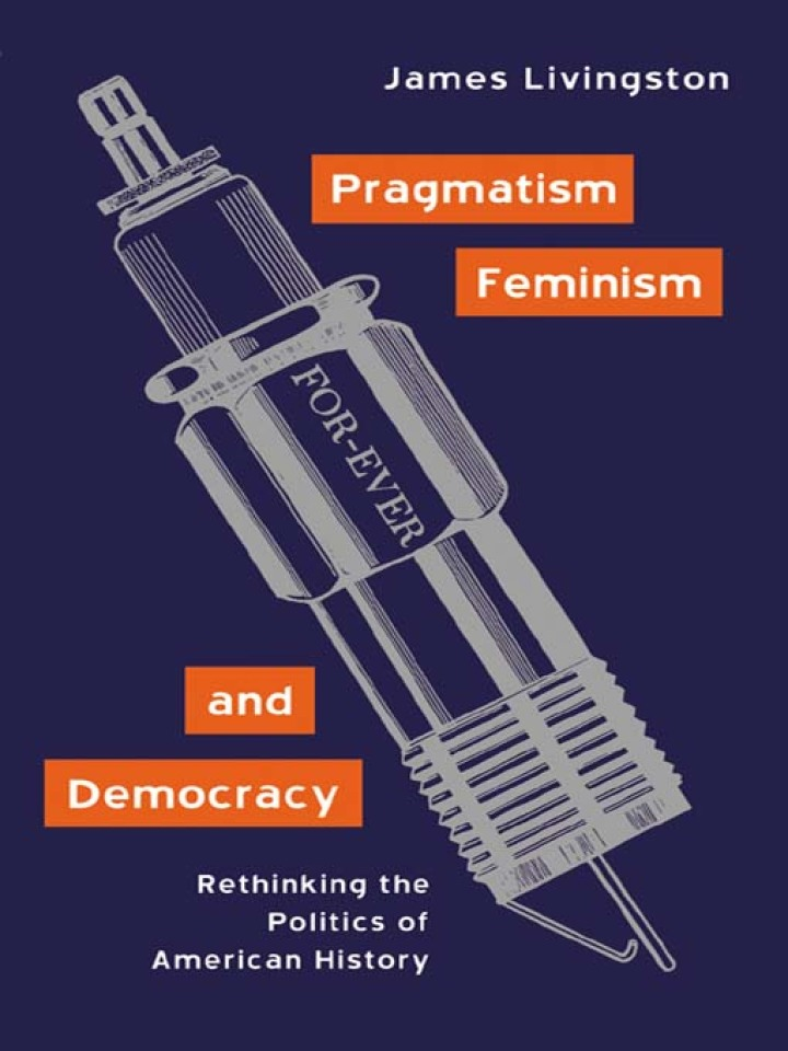 Pragmatism, Feminism, and Democracy