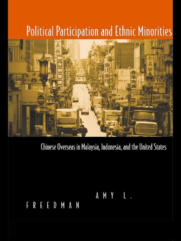 Political Participation and Ethnic Minorities