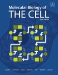EBK MOLECULAR BIOLOGY OF THE CELL, 6E