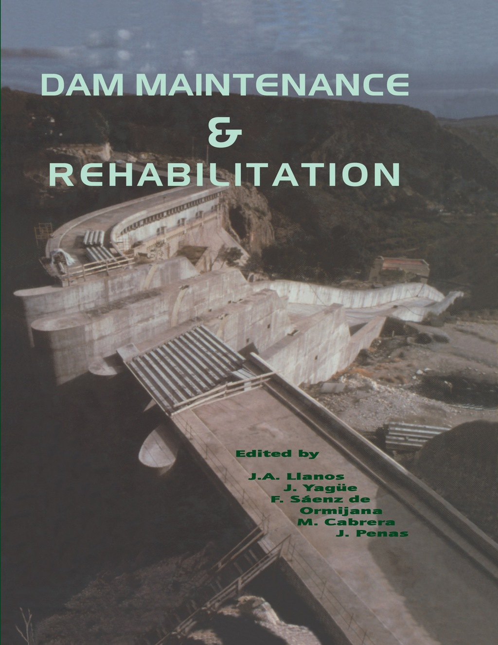 Dam Maintenance and Rehabilitation (eBook Rental)