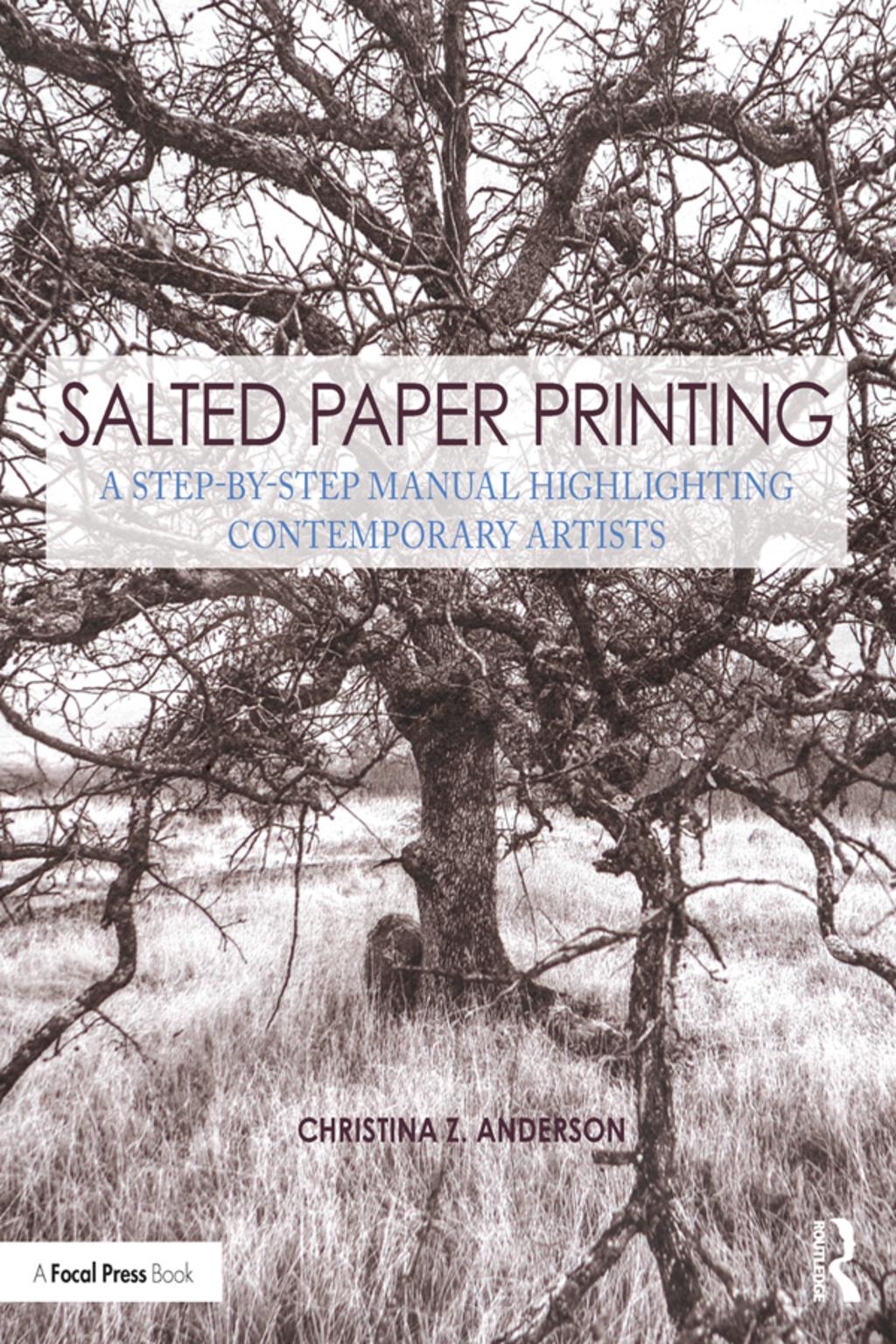 Salted Paper Printing (eBook) (9781351987783) photo