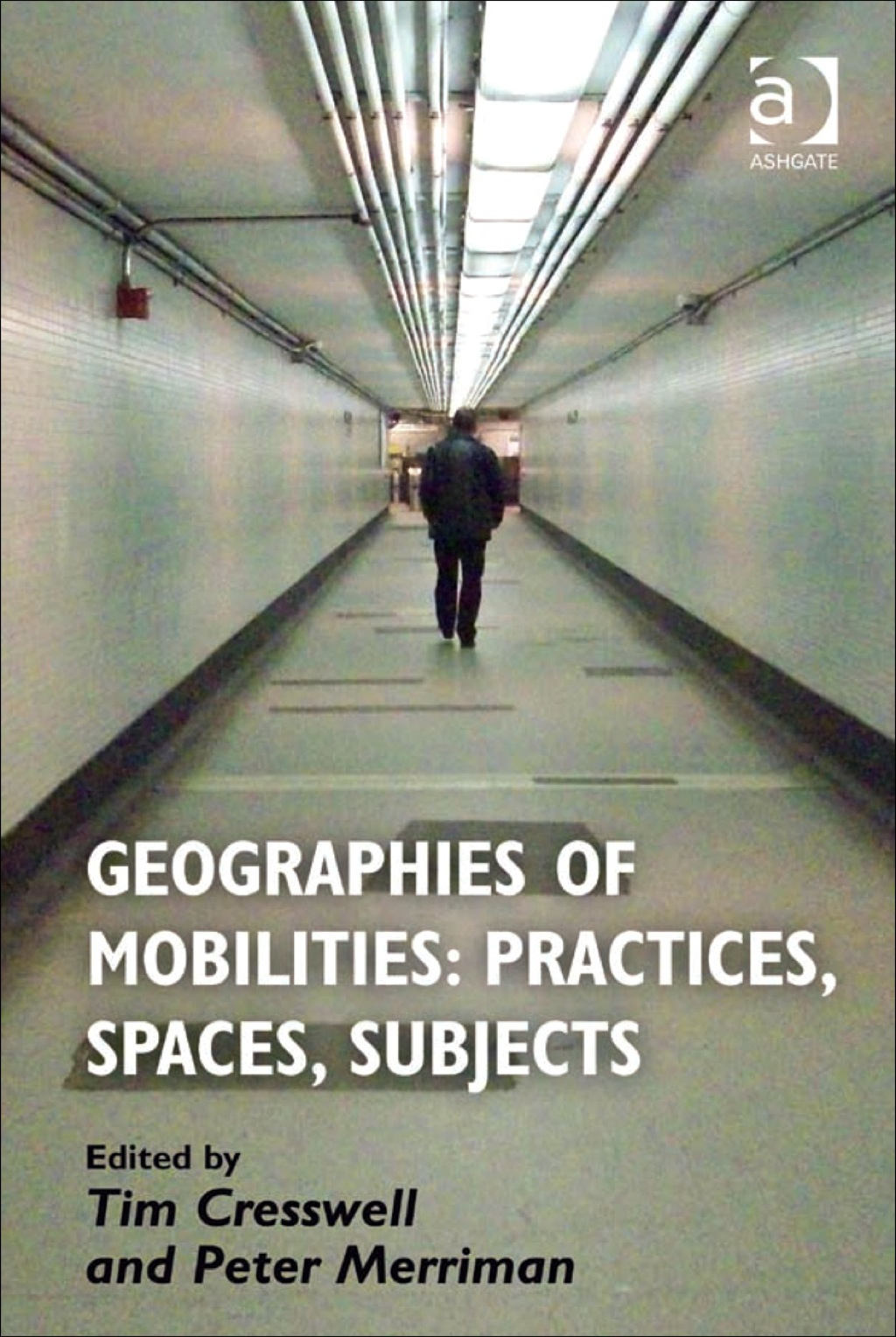Geographies of Mobilities: Practices  Spaces  Subjects (eBook Rental)