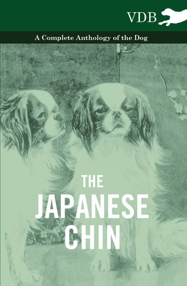 The Japanese Chin - A Complete Anthology of the Dog
