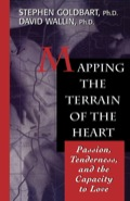 Mapping the Terrain of the Heart 9781461629481