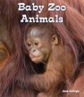 Baby Zoo Animals 9781464500060