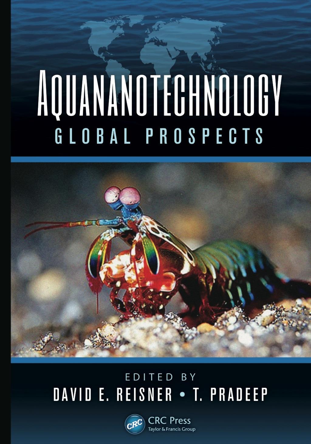 Aquananotechnology (eBook Rental)