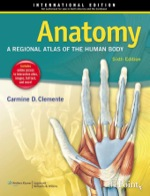 """Anatomy: A Regional Atlas of the Human Body"" (9781469853192)"