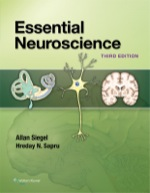"""Essential Neuroscience"" (9781469886602)"