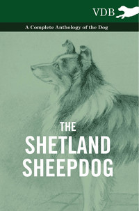 The Shetland Sheepdog - A Complete Anthology of the Dog              by             Various