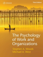 The Psychology of Work and Organizations 3E